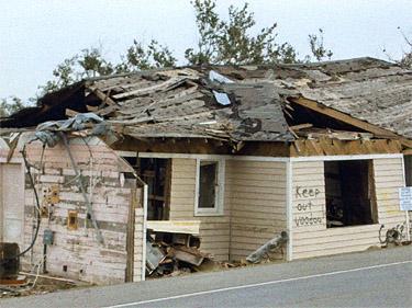 Katrina 39 S Angels An Agency Coordinating Jobs Homes And